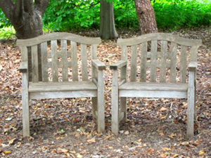 benches-300-225